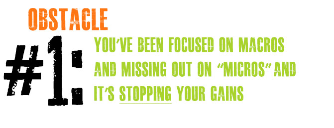 Obstacle 1: You've been focused on macros and missing out on micros and it's stopping your gains