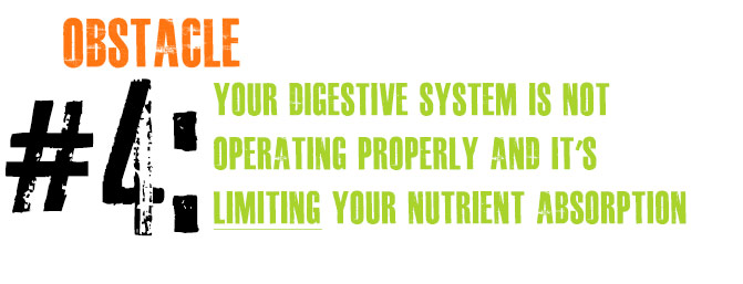 Obstacle #4: Your Digestive System Is NOT Operating Properly And It's LIMITING Your Nutrient Absorption